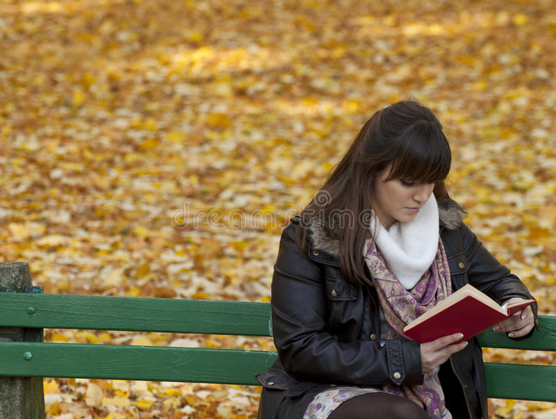 Beautiful young woman reads book stock photography