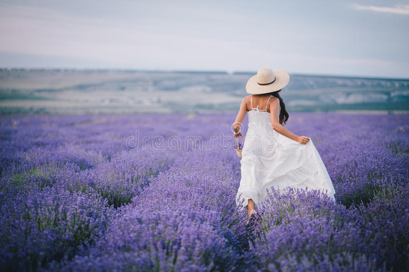 Beautiful young woman running in a lavender field royalty free stock image