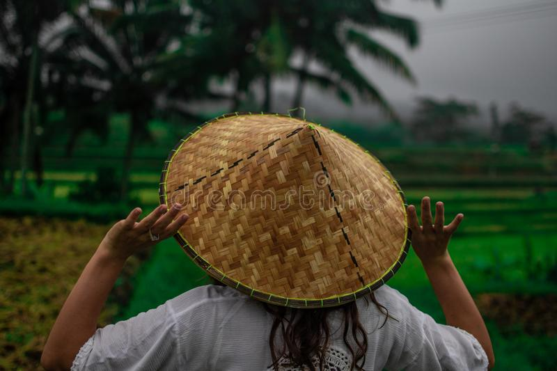 Beautiful young woman in shine through dress touch asian, Vietnam rice hat. Girl walk at typical Asian hillside with rice farming stock photo