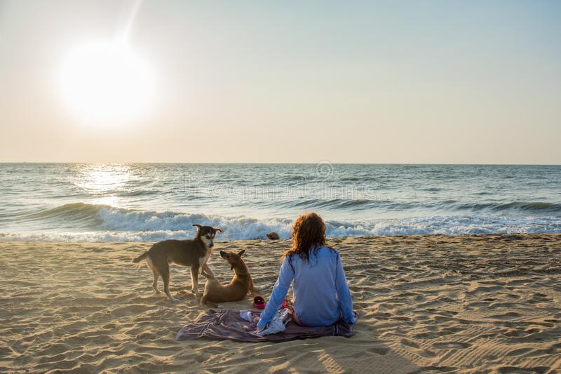 Beautiful young woman sitting on the towel at the beach with two dogs playing around during sunset stock images