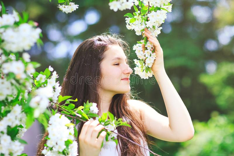 Beauty young woman in spring blossom park. Spring outdoor por. Trait of a dreamy girl in spring season. Romantic girl in the spring garden among tree blossom stock photography