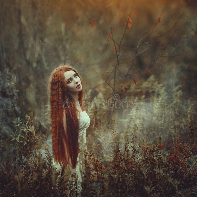 A beautiful young woman with very long red hair as a witch walks through the autumn forest. stock images