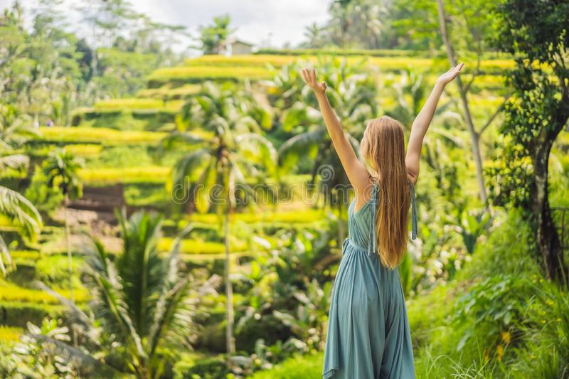 Beautiful young woman walk at typical Asian hillside with rice farming, mountain shape green cascade rice field terraces royalty free stock images