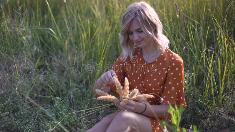 Beautiful young woman walks in the field collects a bouquet of flowers and spikelets. Portrait of attractive female on grass at su stock photos