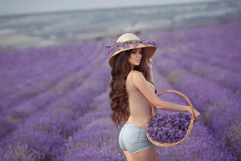 Beautiful young woman with in wicker hat posing in purple laven. Der field with basket in her hand. Carefree girl with long healthy wavy hair. Human countryside stock photography