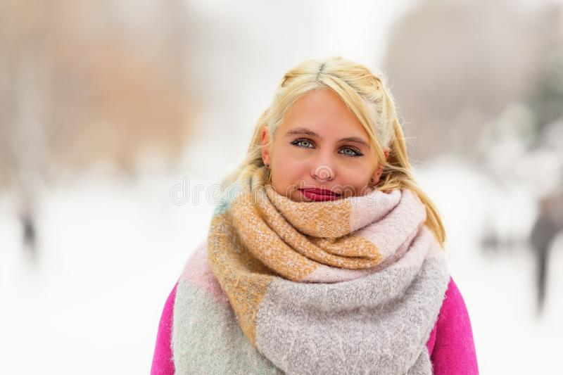 Beautiful young woman in winter day royalty free stock images