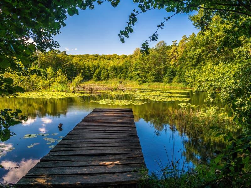 Beautiful Zatorek Lake on Wolin Island, Poland royalty free stock image