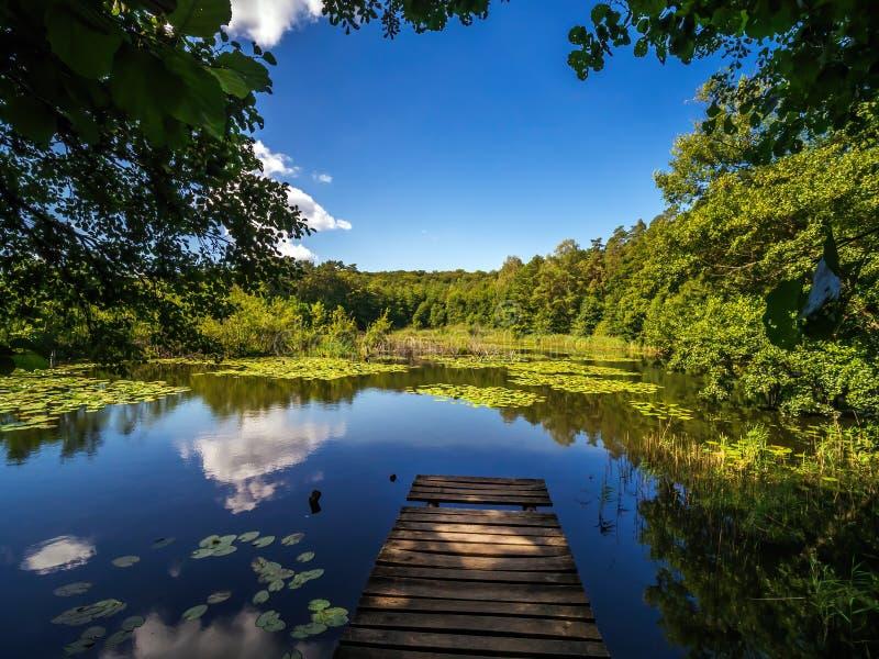 Beautiful Zatorek Lake on Wolin Island, Poland stock images