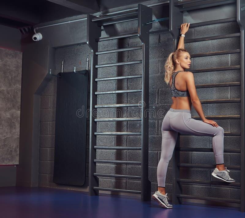 Beautifull健身妇女在现代健身中心做舒展倾斜在肋木 库存图片