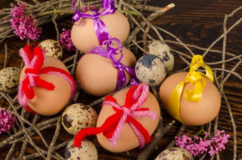 Beautifull Easter eggs nest royalty free stock photo