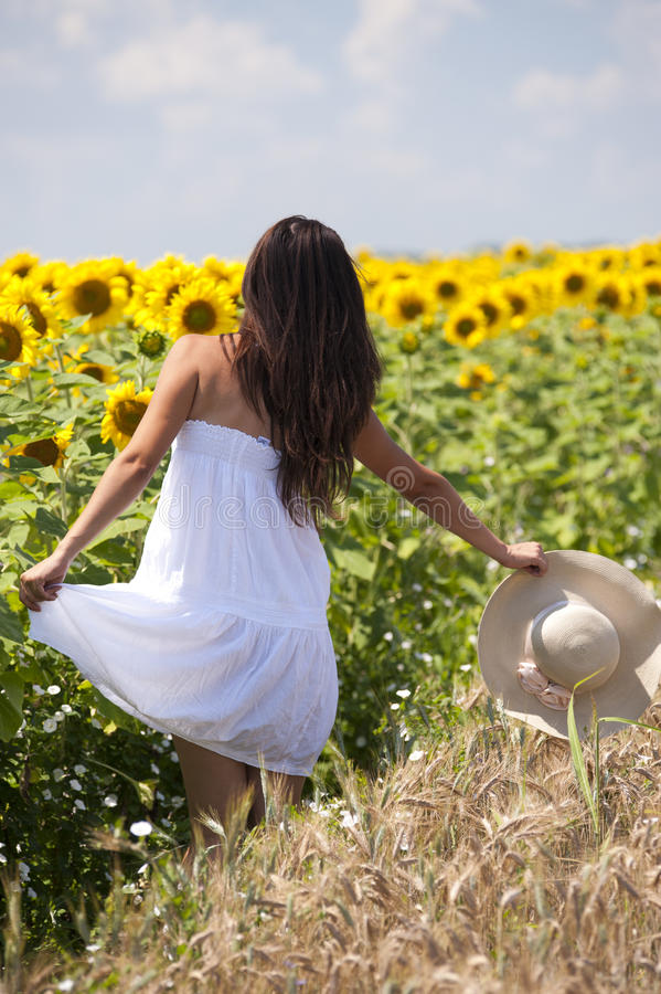 Beautifull girl playing near sunflower field stock photography