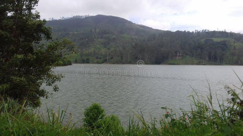 Beautifull srilankan lake at kandy. Blue color lake and it is a large natural lake with trees stock photos