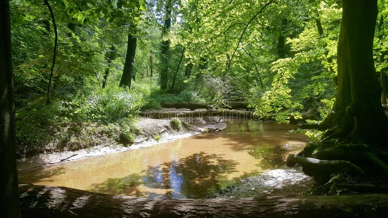 Beautifull little creek in Holland royalty free stock photos