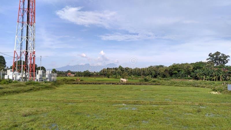 Beautifull village with mountain backround stock photo
