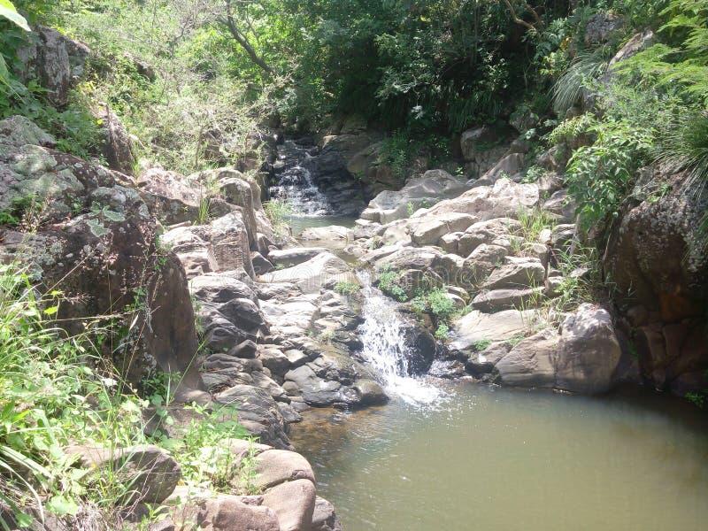 Beautifull waterfall royalty free stock photo