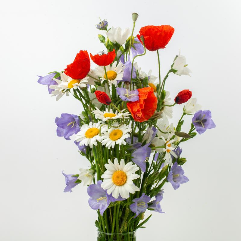 Wild flower posy over white background. royalty free stock images