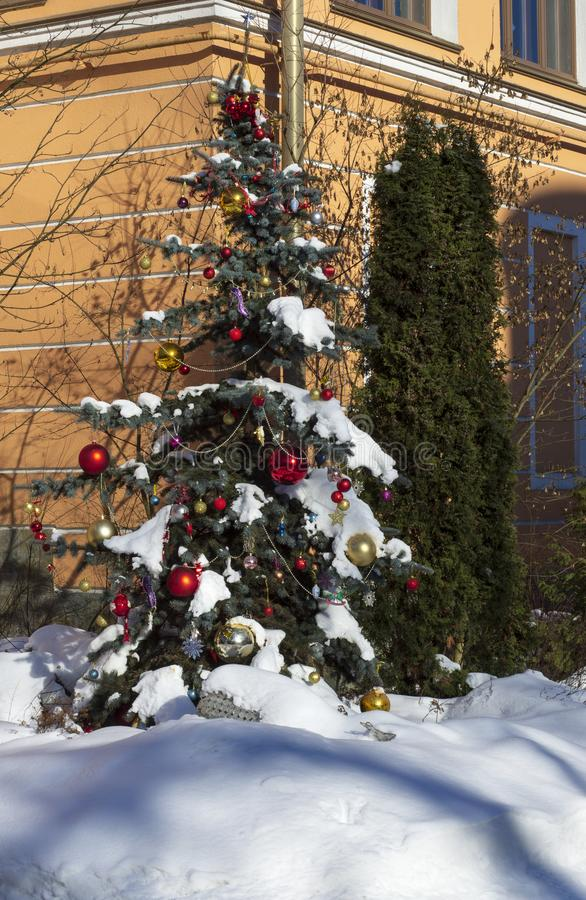Beautifully decorated Christmas tree with branches covered in snow royalty free stock photography