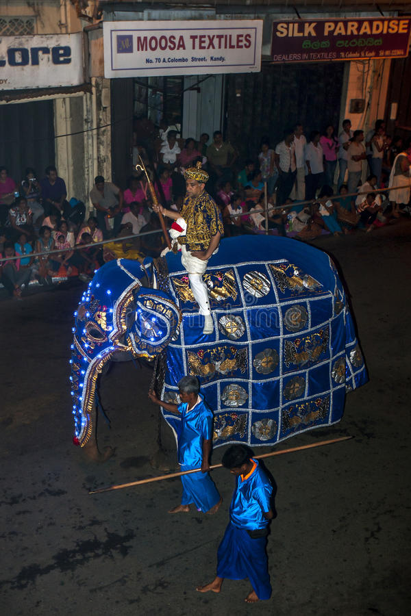 A beautifully dressed ceremonial elephant parades down Colombo Street in Kandy, Sri Lanka during the Esala Perahera. The Esala Perahera (Great Procession) is royalty free stock photo