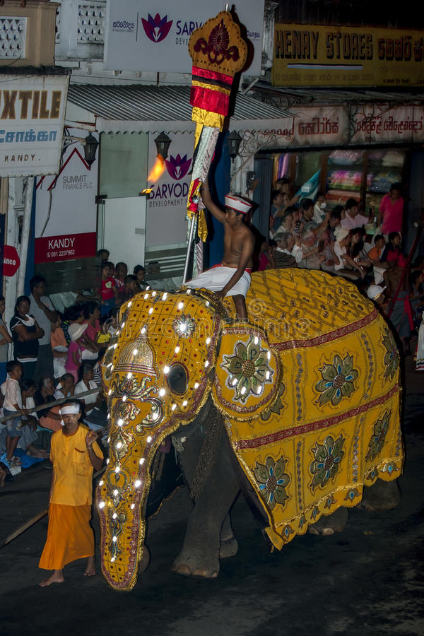 A beautifully dressed ceremonial elephant parades down Colombo Street in Kandy, Sri Lanka during the Esala Perahera. The Esala Perahera (Great Procession) is royalty free stock image