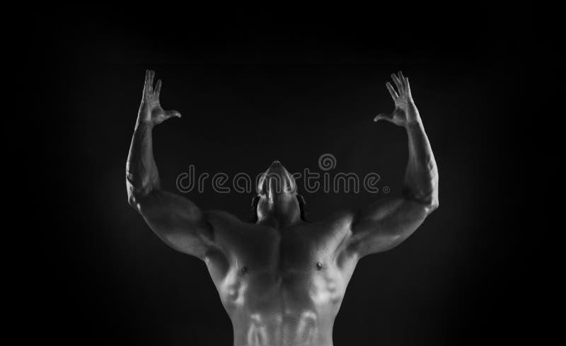 beautifully sculpted kroppsbyggare arkivbild