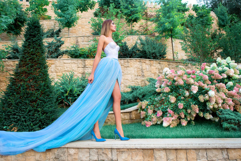 年轻beautilul妇女画象长的蓝色礼服的 免版税库存照片
