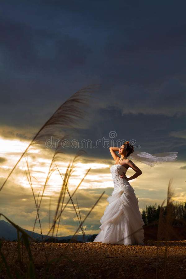 A beautuful bride in forest,cloudy twilight blue sky. Beautuful bride in forest,cloudy twilight blue sky stock images