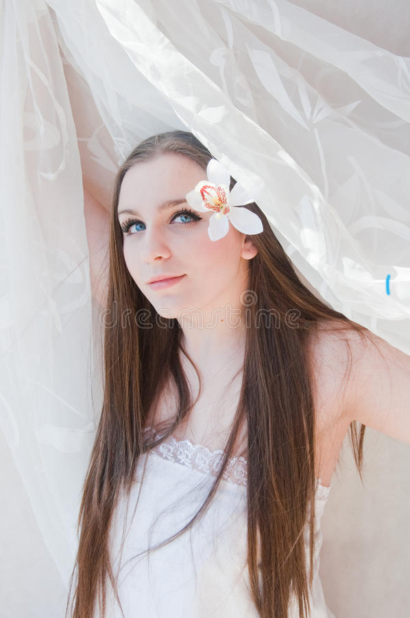 Beauty Bride Stock Images