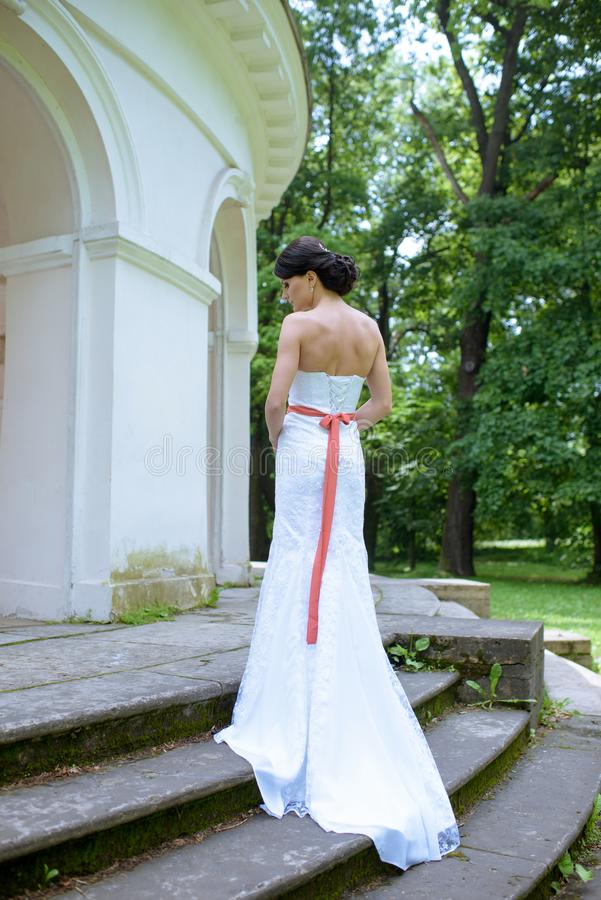 Beauty bride in bridal gown with lace veil in the nature stock photos