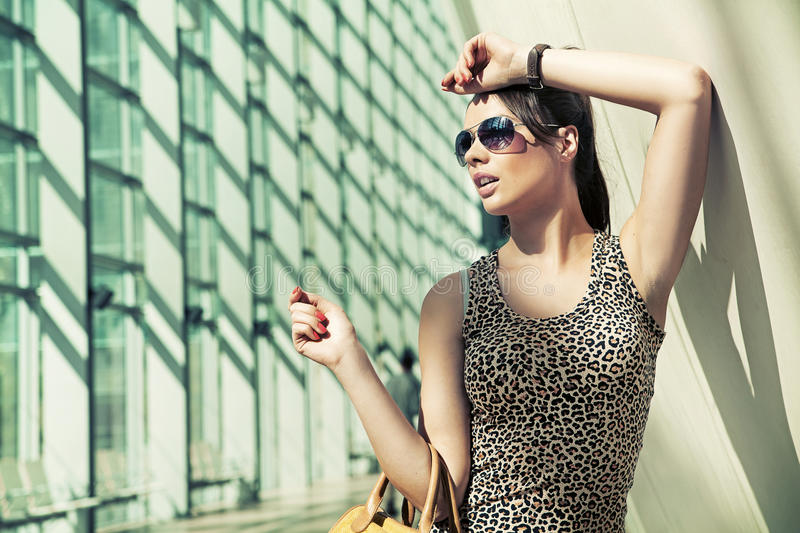 Download Beauty brunette stock image. Image of clothes, dress - 27375695