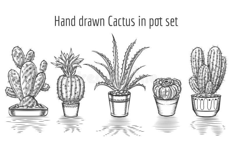 Beauty cacti. Hand drawn cactus in pot set royalty free illustration