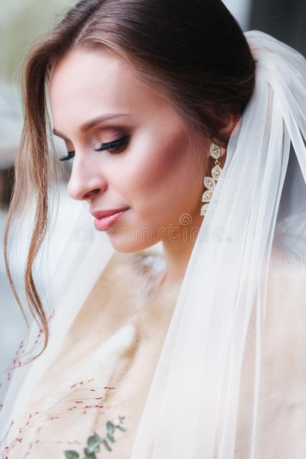 Beauty close-up portrait of bride with luxury make-up and hairstyle outdoor stock image