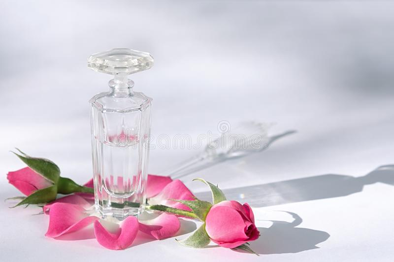 Beauty concept. A bottle of perfume stands on a white table surrounded by rose petals and buds royalty free stock image