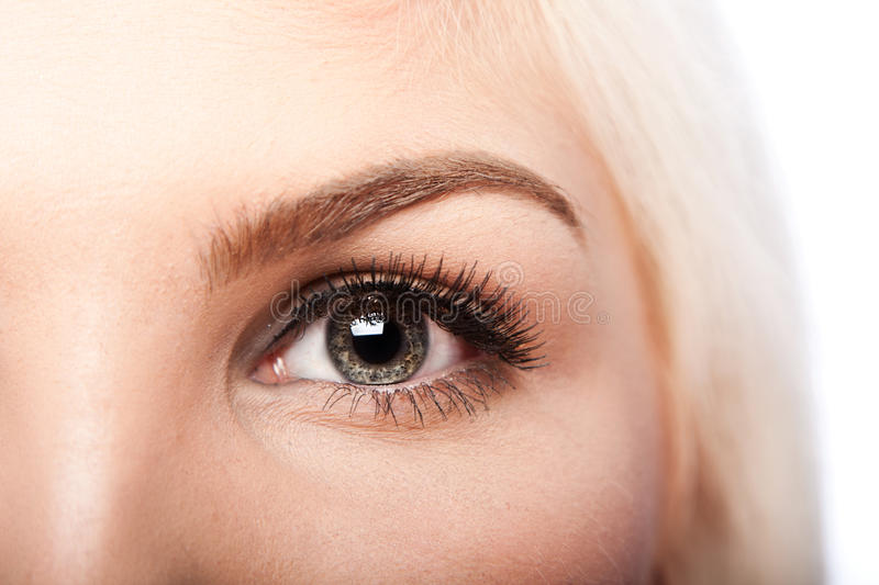 Beauty Eye and eyebrow. Beautiful eye with long lashes and eyebrow of Caucasian woman royalty free stock photos