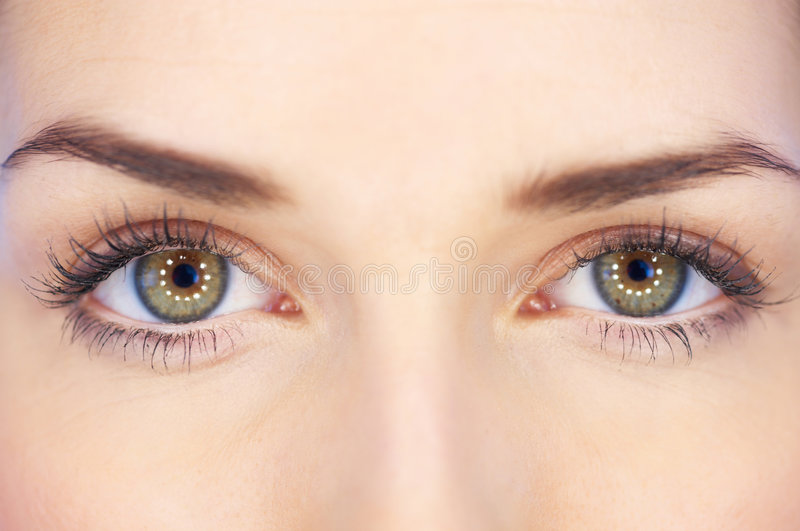 Download Beauty Eyes stock photo. Image of portrait, adult, skincare - 7975726