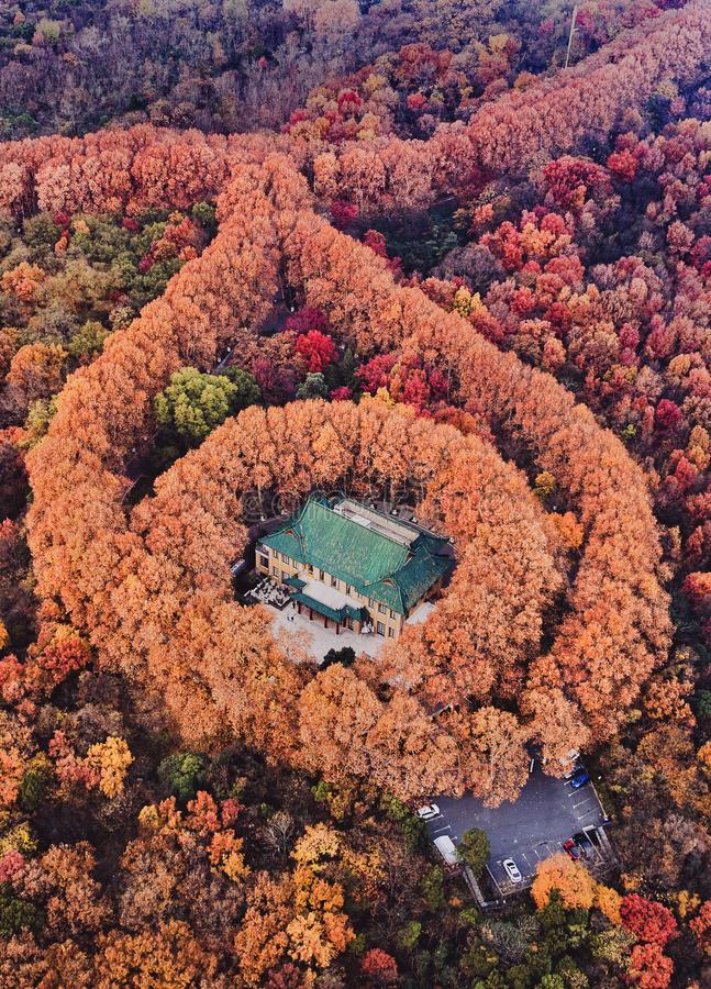 The beauty of the fall of the palace. This is the building of the Ming Dynasty in Nanjing, the famous Republic of China, and the birthday present given by Chiang