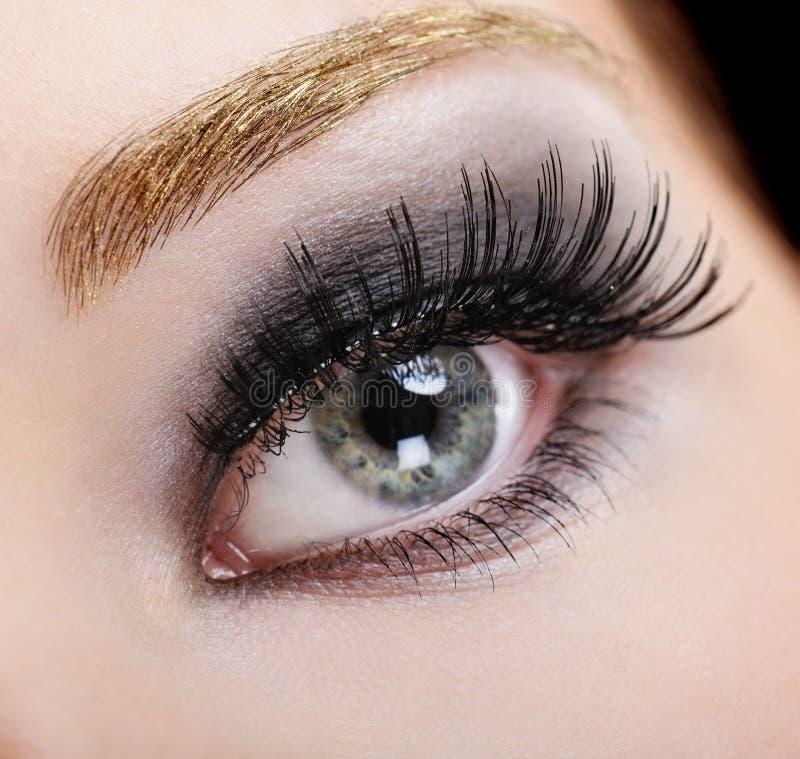 Beauty false eyelashes royalty free stock images