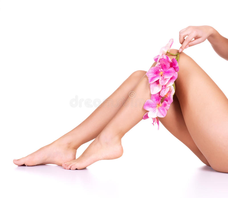 Download Beauty female slim legs stock image. Image of human, perfect - 27775753