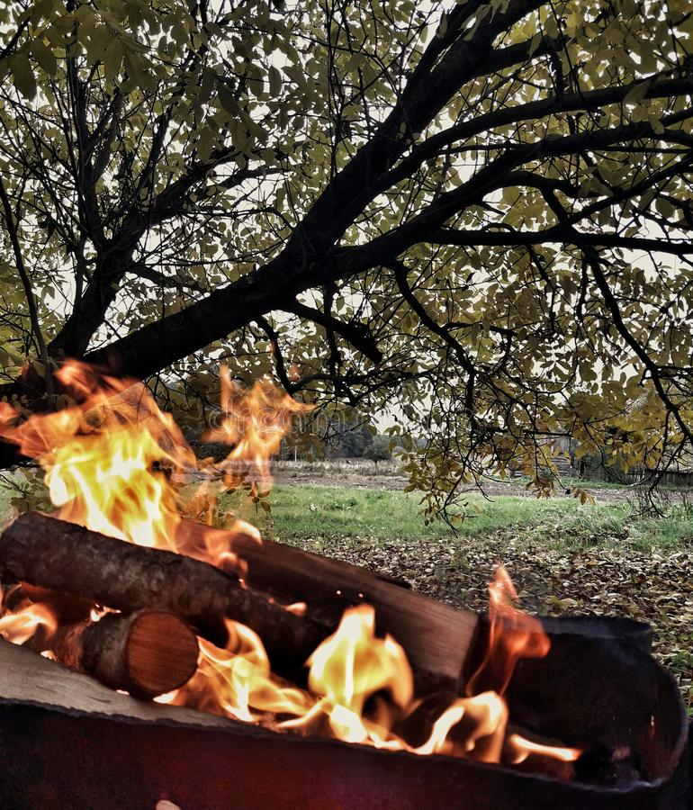 Beauty fire and picture forest. Fire and forest, village stock image