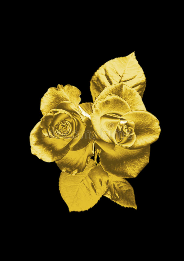 Beautiful Flower Of A Rose From Gold On Black Background Close Up