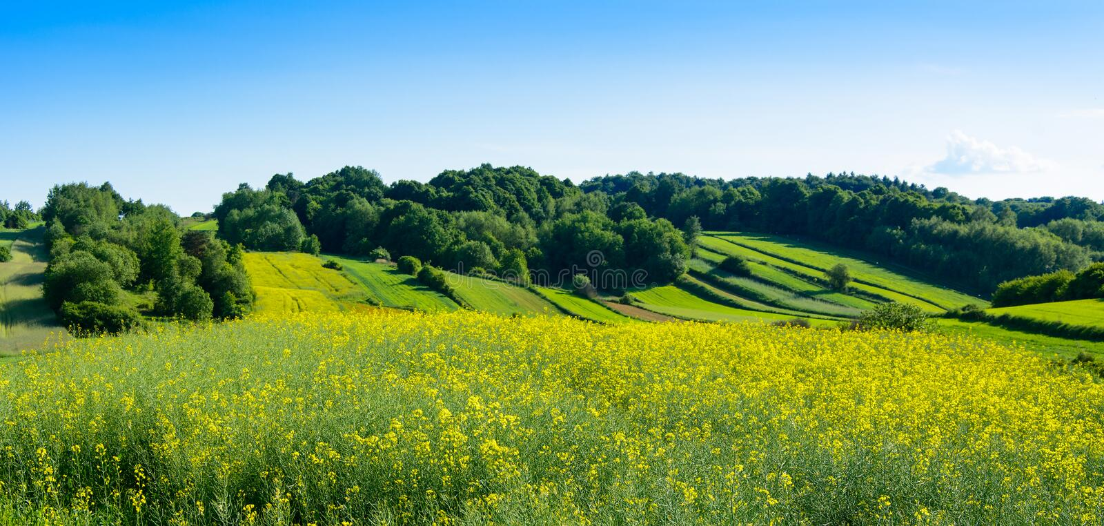 Download Beauty Green Hills In Poland Stock Photo - Image of spring, poland: 72244898