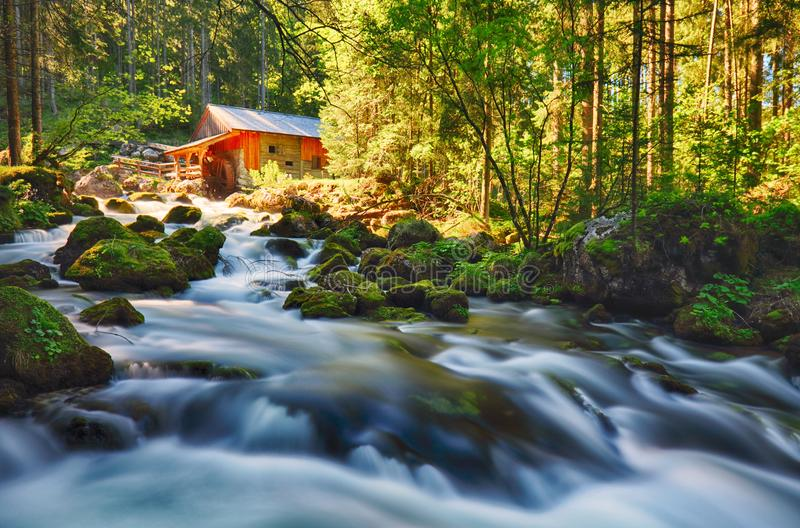 Beauty landscape with river and forest in Austria, Golling.  royalty free stock photos
