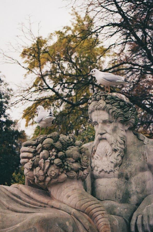 Beauty in Lazienki Park. stock photos