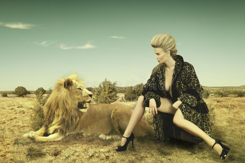 Beauty and lion royalty free stock photography