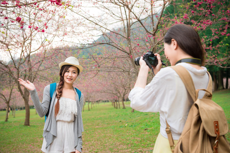 Beauty modern girlfriends sightseeing sakura royalty free stock image