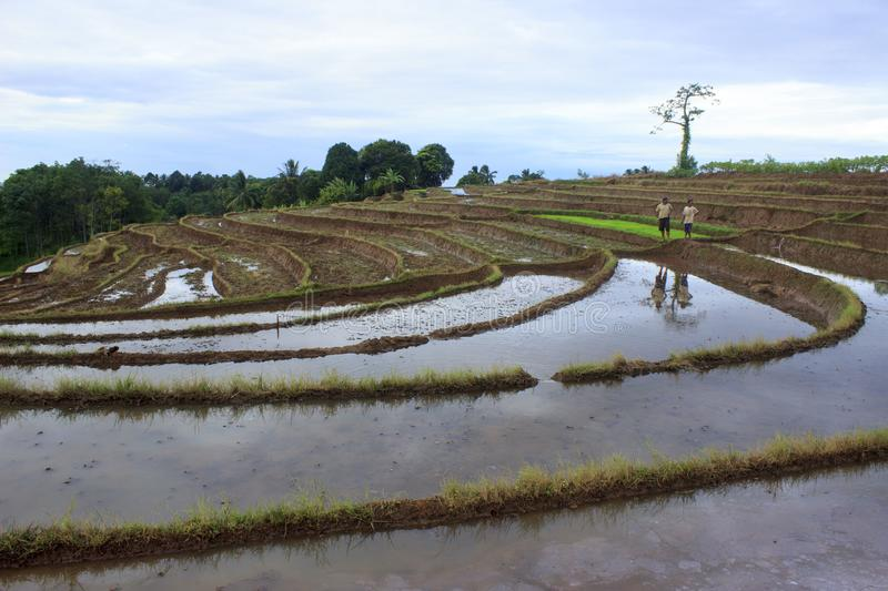 Morning story in north bengkulu stock photo