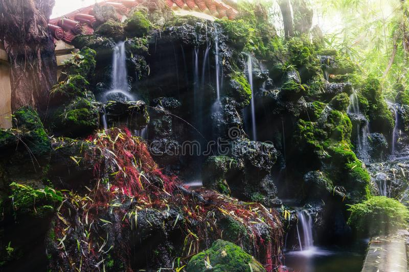 The beauty of mosses and rocks on waterfalls in nature royalty free stock photos