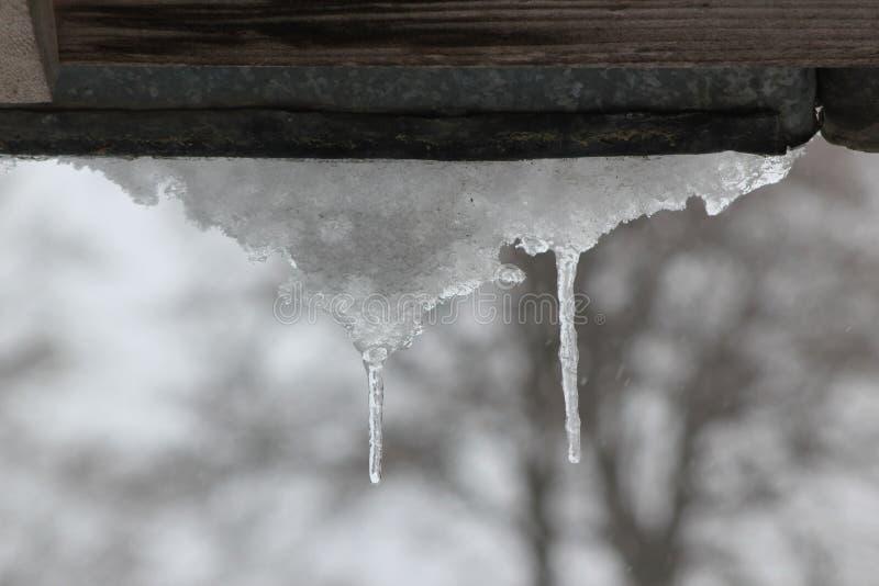 Freezing royalty free stock photography
