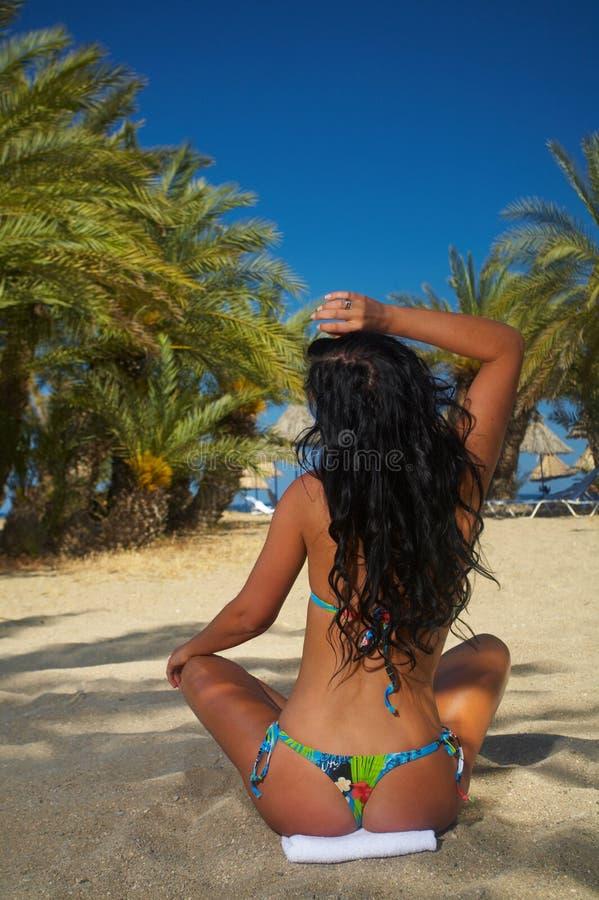 Beauty & Palms stock photo