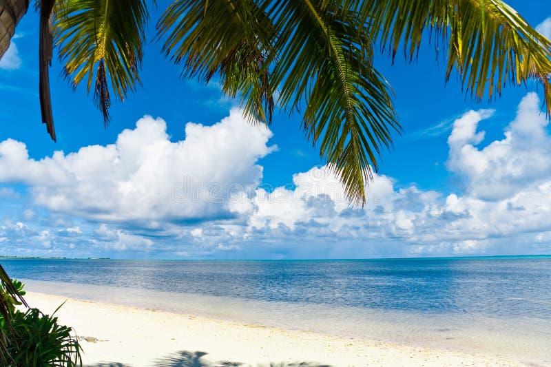 Beauty Paradise stock images