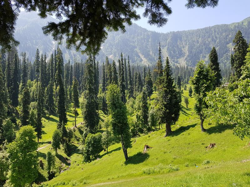 Beauty Peace Love Pakistan Kashmir. Sky, , clean, green, , , , neelam, arang-kel stock image